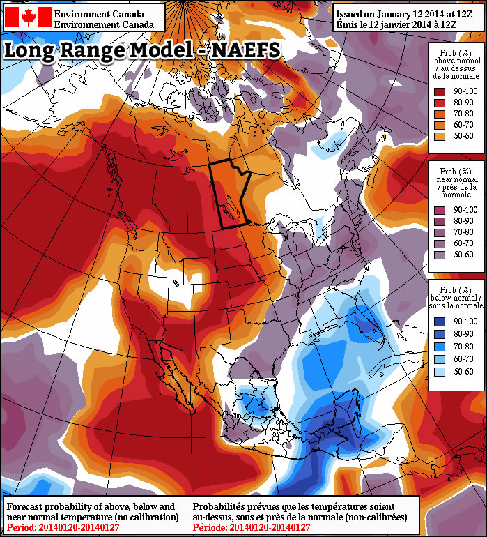 Warmer than normal weather is being forecast by the NAEFS model for the second half of January