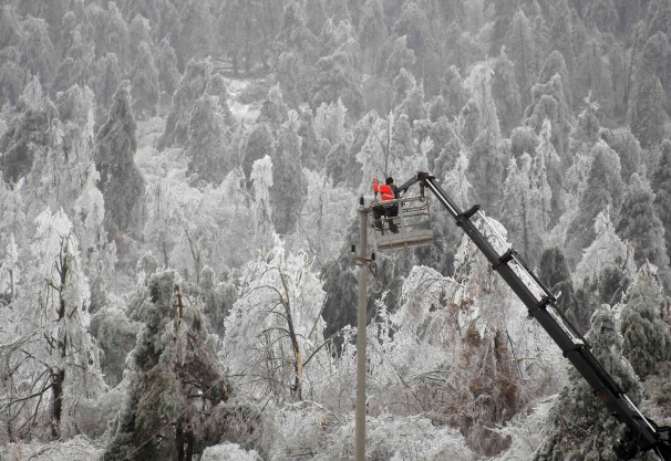 Forests were severely damaged by the ice storm.